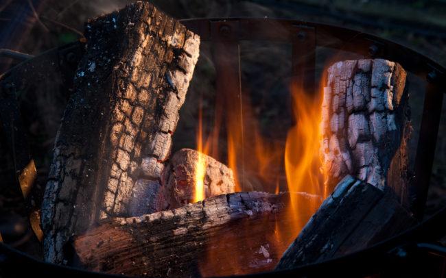 Winter Wonderland BBQ Sysmex