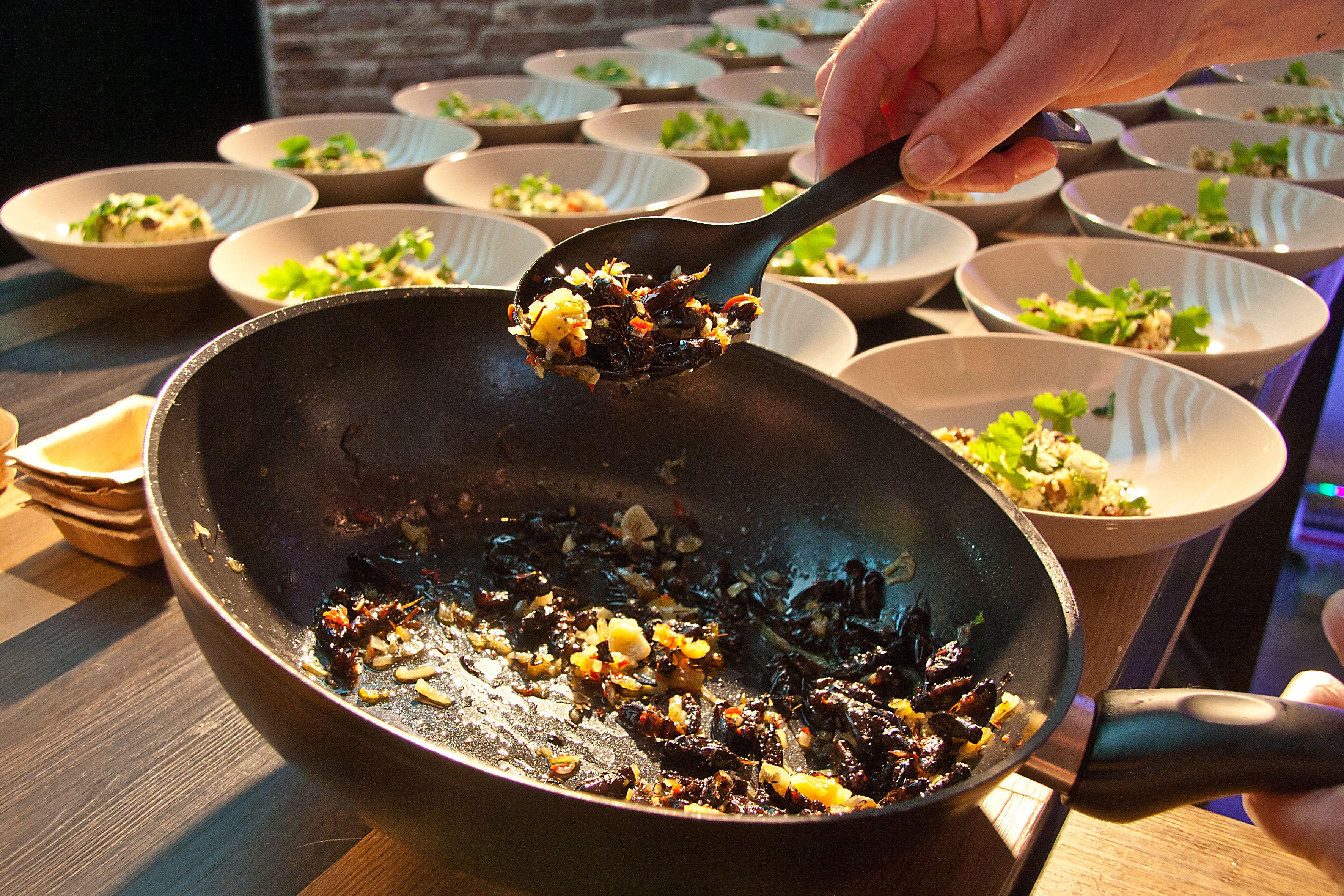koken met insecten
